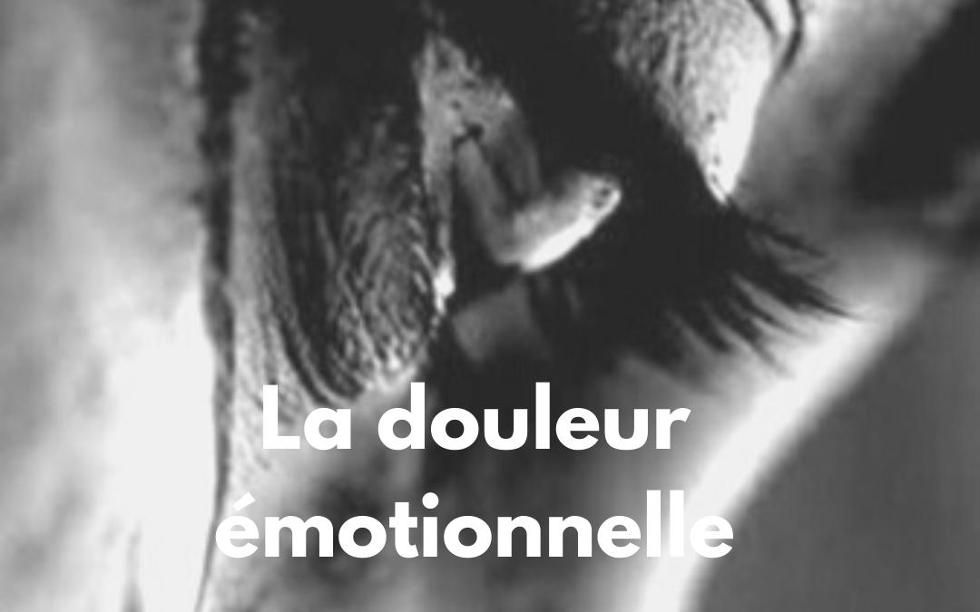 Faire face à la douleur émotionnelle